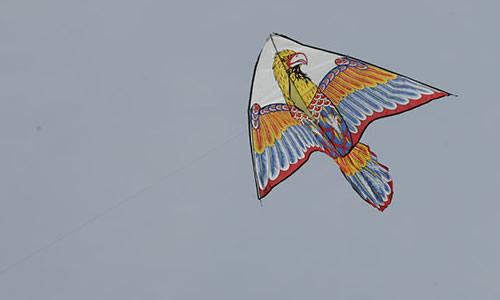 春天放风筝的作文500字