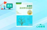八年级下册数学新课程自主学习与测评答案人教版